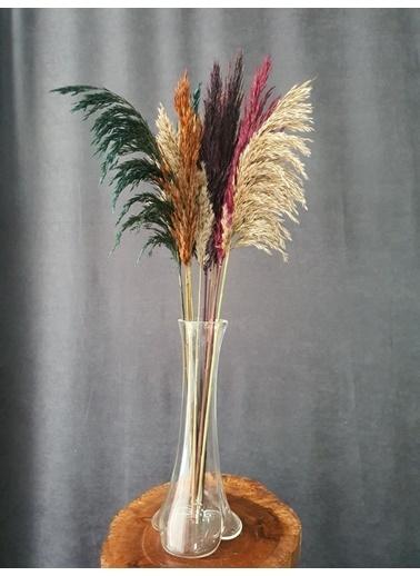 Kuru Çiçek Deposu Kuru Çiçek Şoklanmış 10'Lu Pampas Otu Karışık 100 Cm Renkli